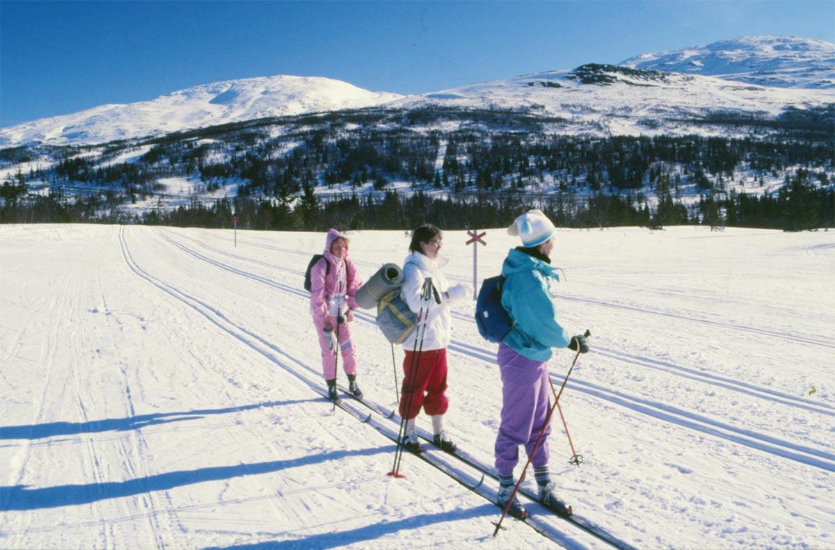 Tre tappra följeslagare på långfärden runt Mullfjället: Gunilla, Rut och Camilla. Här i början av färden i Ullådalen.